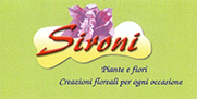 SironiPiante